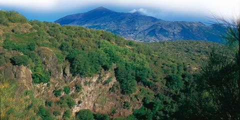 Monte Salto del Cane: escursione sull'Etna a 1.400 m di altitudine