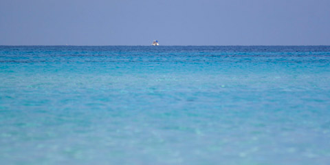 """A Favignana le """"Giornate del Mare"""" 2012"""