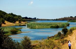 Lago Biviere Parco dei Nebrodi