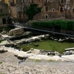teatro-romano-catania-luigi-marino-8086