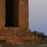 Tempio della Concordia con lo sfondo il Tempio di Hera