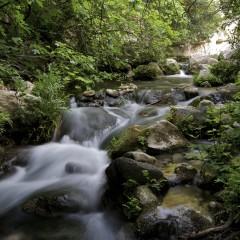 Pantalica: oasi di tranquillità e meraviglia naturalistica