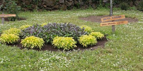 Il giardino delle piante aromatiche Artumata apre i cancelli per un incontro a tutta natura.